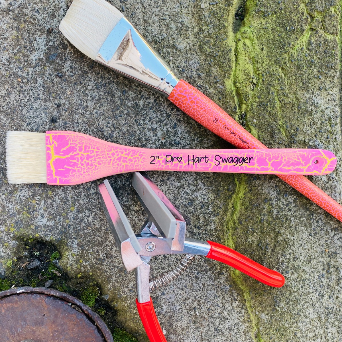 Canvas Pliers by Freaky Frida with Signature Pro Hart Swagger Paint Brushes
